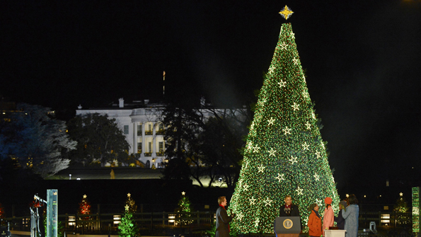 National Christmas Tree, Washington, DC, 2012