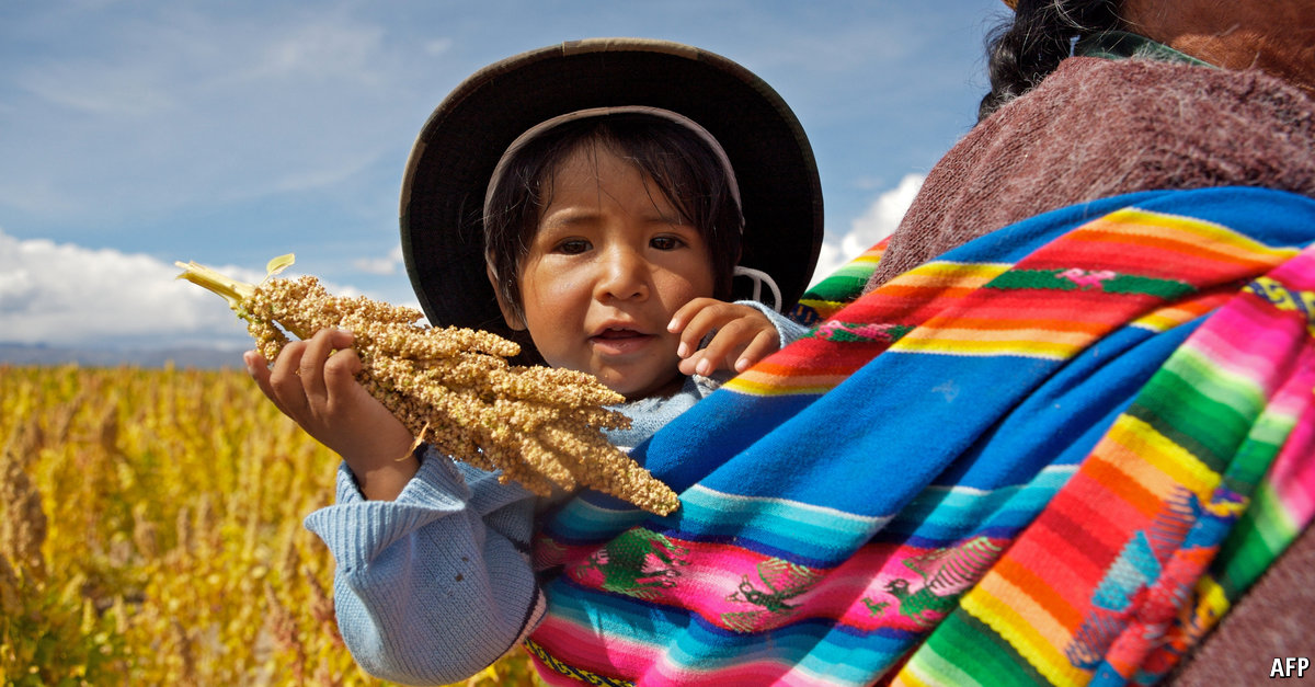 Plummeting quinoa prices are hurting farmers in Peru and Bolivia
