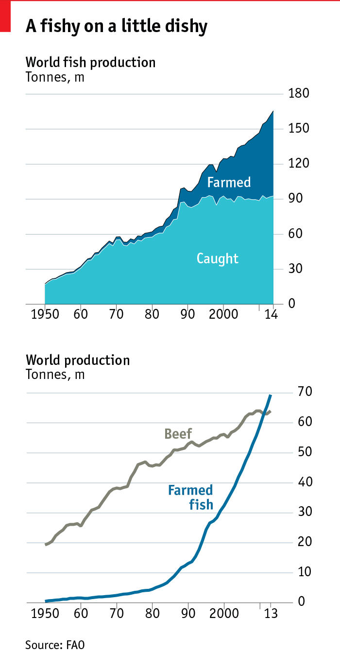 The future of agriculture | The Economist