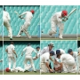 Safety in cricket