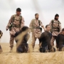 The war against Islamic State