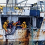 Combating illegal fishing