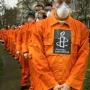 Amnesty International and jihad