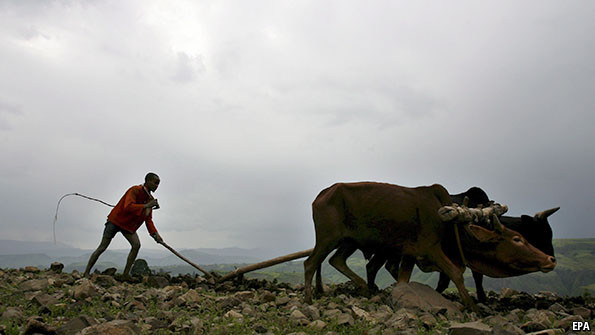 Farmers in Ethiopia, where it is alleged abuses are taking place.