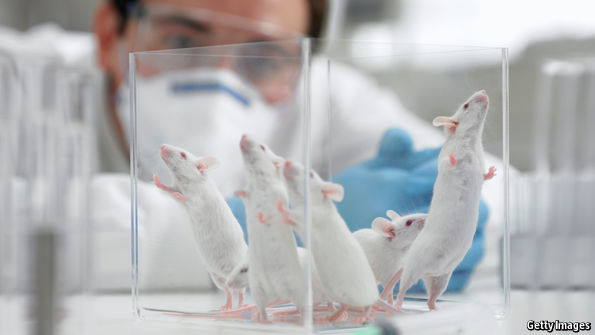 Are laboratory mice too clean?