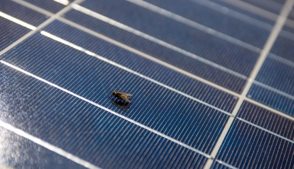 Solar cells: Tiny balls of fire
