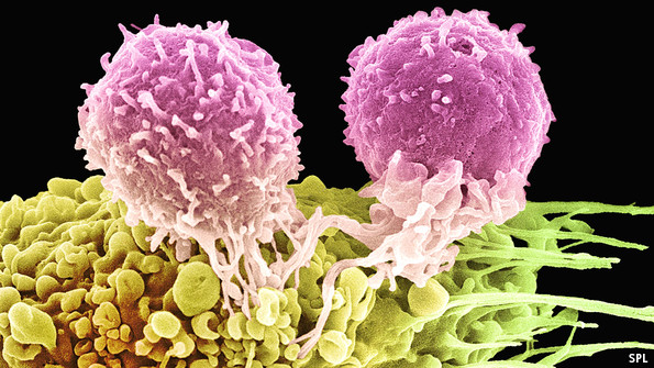 Cancer drugs: Getting close
