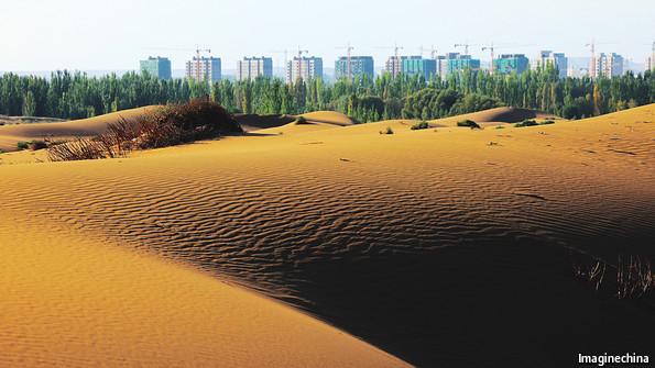 Мировая экология: Китайцы борются с песком, высаживая деревья