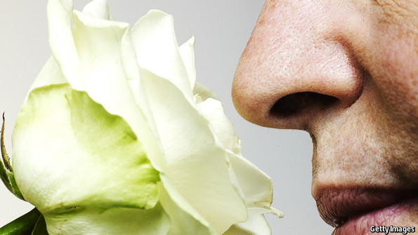 Longevity and the sense of smell: The scent of death