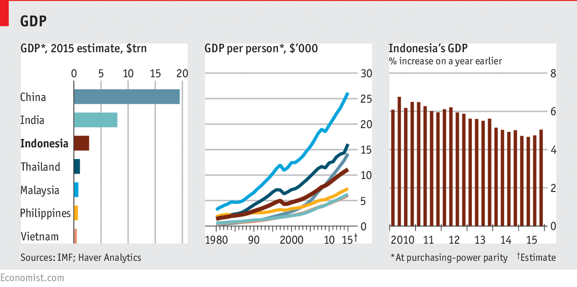 Indonesia in graphics: Tiger, tiger, almost bright | The ...