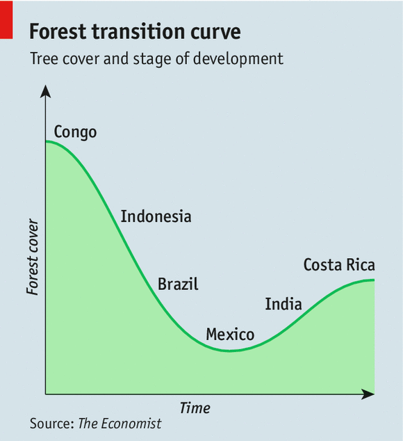 How many tree are being cut around the world at this very moment?