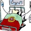 The Portuguese patient