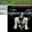 Cyber-hacktivism