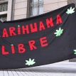 How will Uruguay's marijuana law work?