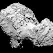 Rosetta's stone