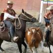 Rodeo rift