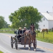 What do the Amish think of a Mormon presidential candidate?
