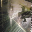 Robot-aided, mass-murder jellyfish orgy