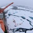 Polar power play