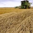Prairie pile-up