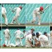 The bravery of the batsman