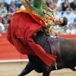 Of bulls and ballots
