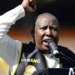 The rise of Julius Malema