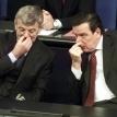 Joschka Fischer v Gerhard Schröder