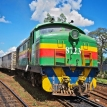 'Climbing aboard the Africa train' from the web at 'http://cdn.static-economist.com/sites/default/files/imagecache/topics-thumbnail/images/print-edition/20150926_WBP001_0.jpg'