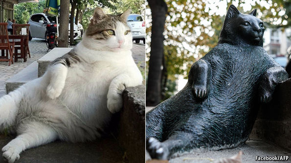 Famous Video Game Cats