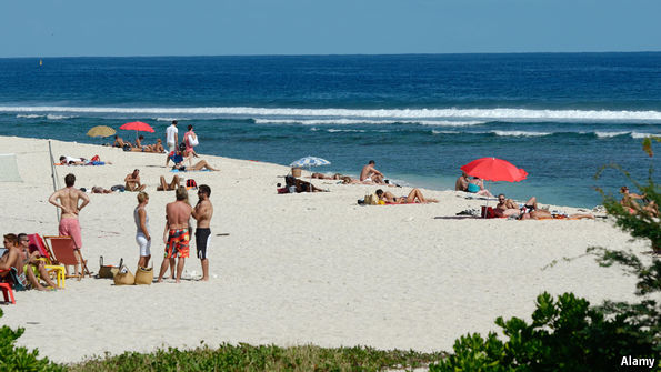 Why Shark Attacks Are On The Rise In Reunion