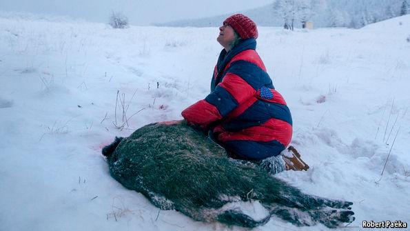 Agnieszka Holland's new film is a subtle ecological thriller