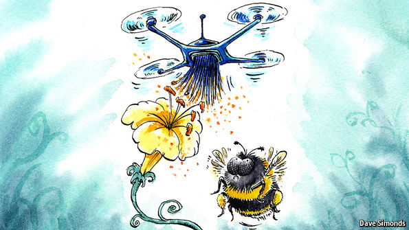Plans for artificial pollinators are afoot