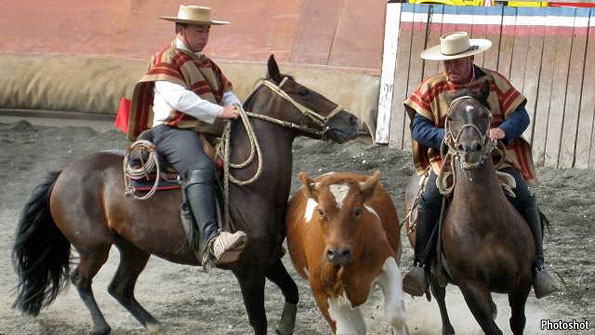 Elitism in Chile's national sport: Rodeo rift | The Economist