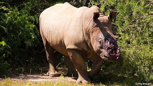 Un-marketing rhino horn