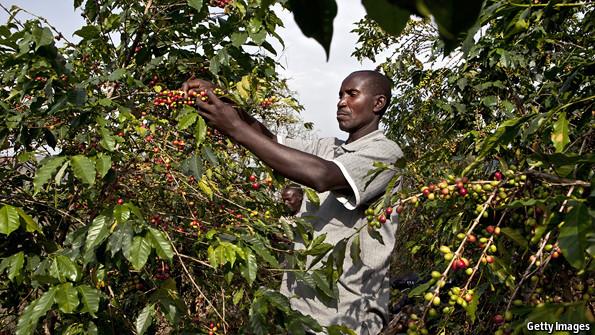 Not so fair trade