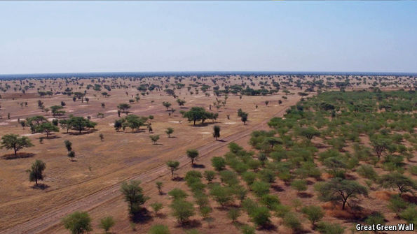 what is africa s great green wall the economist explains