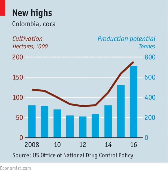 Resultat d'imatges de coca production colombia