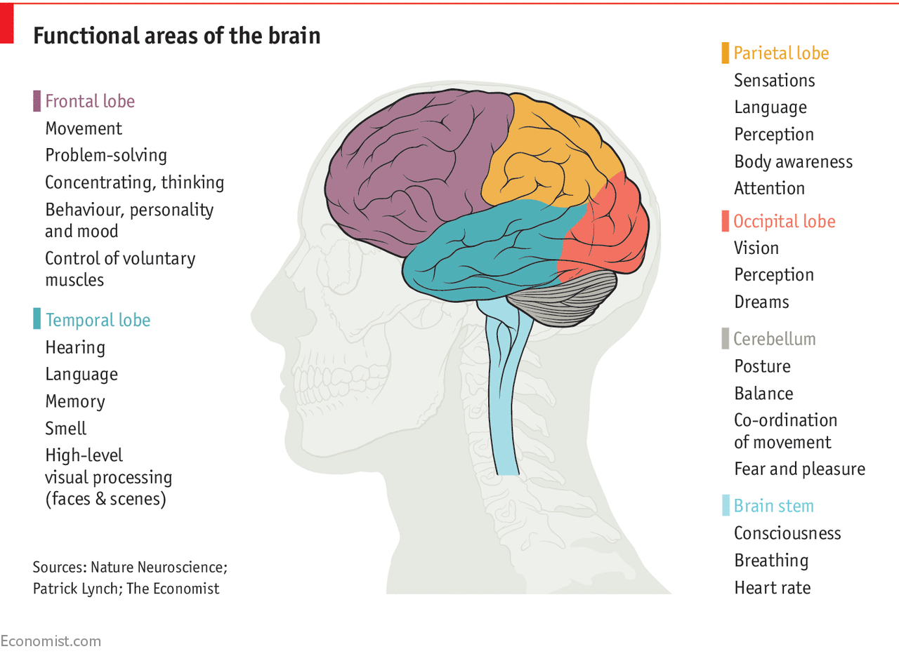 How brains and machines can be made to work together ...