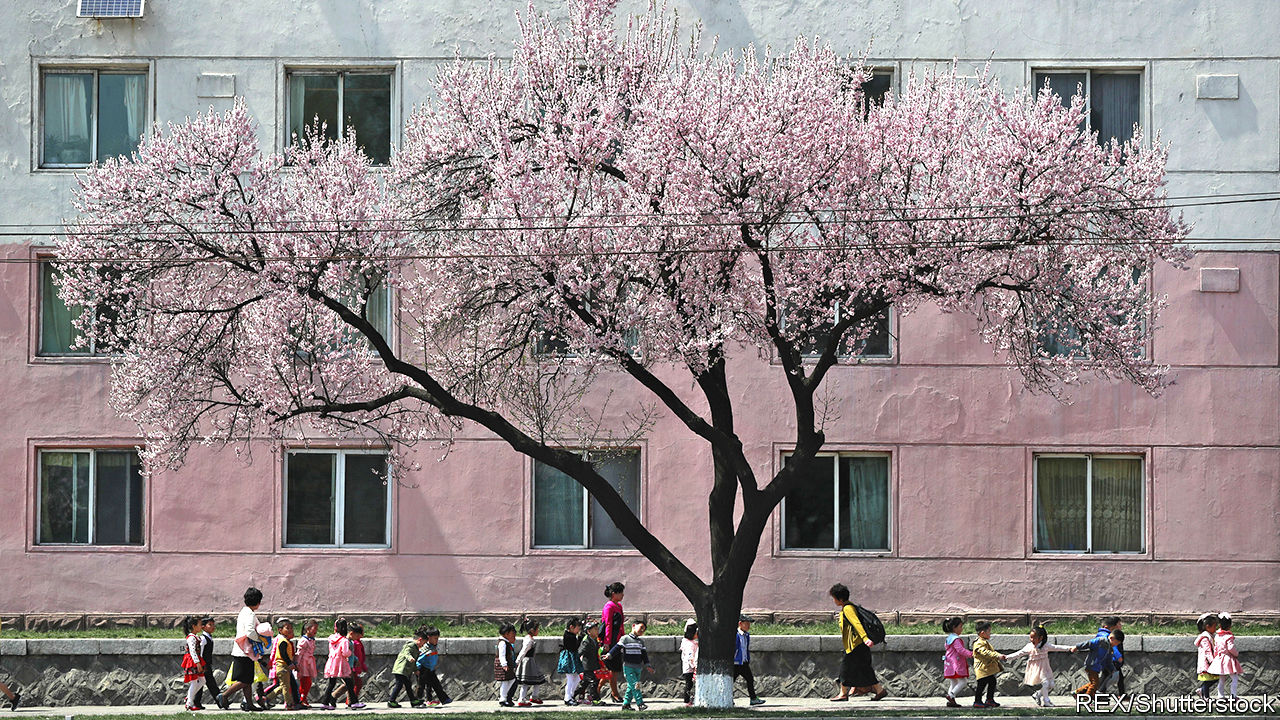Pastel-coloured penuryWhat life is like for ordinary North Koreans