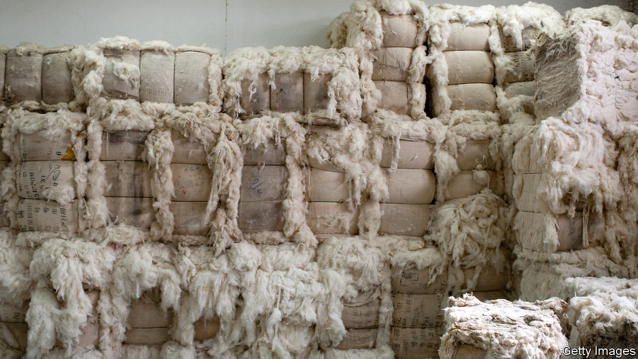 Hard-up firms in China use cashmere and pork to repay loans
