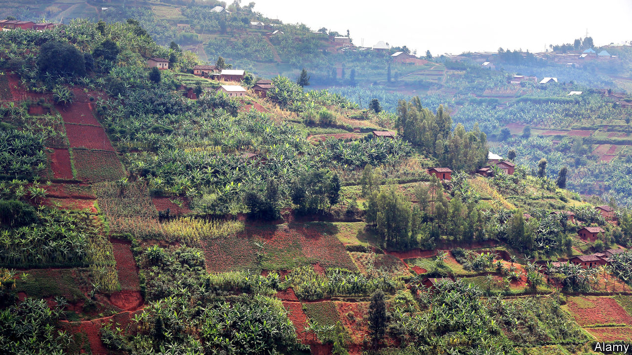 In Rwanda, farming competently is not enough