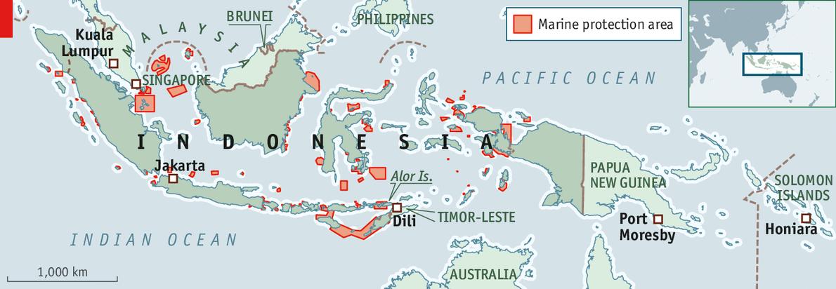 Saving Indonesia's fisheries: Plenty more fish in the sea ...  Saving Indonesi...