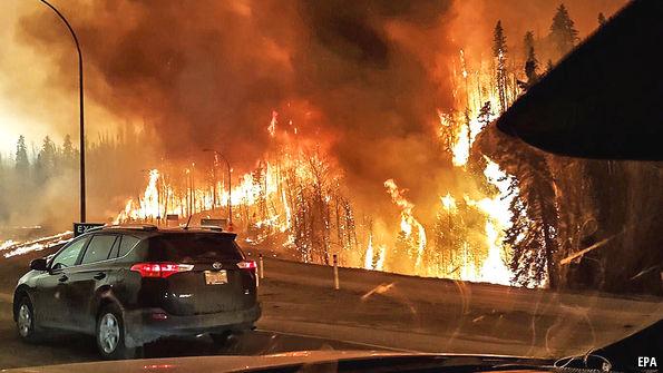 Wildfire benefits...help?