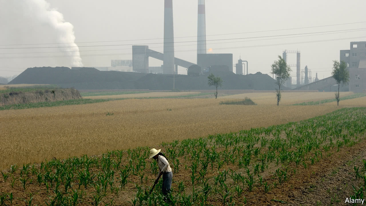 The most neglected threat to public health in China is toxic soil