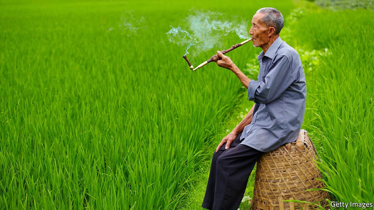 article image  |China Farmland