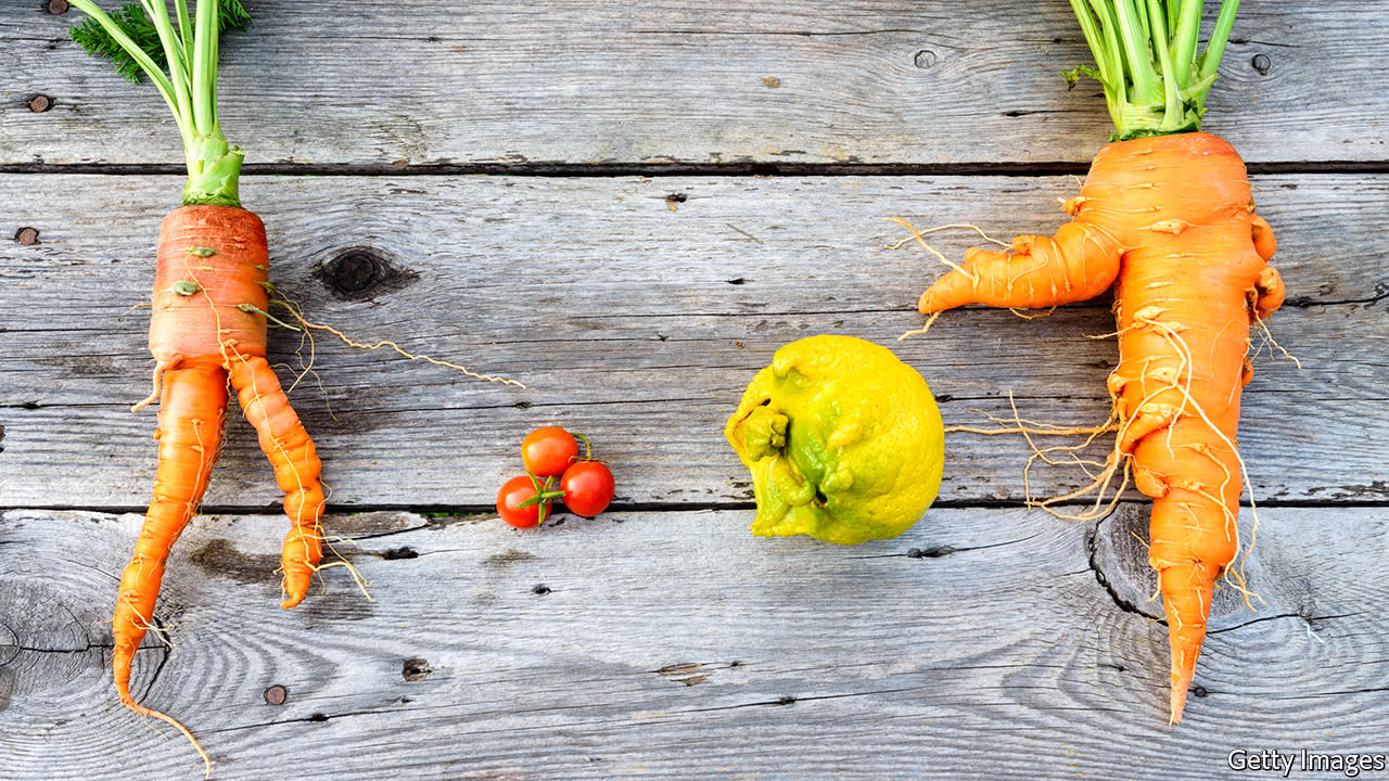 A new market for old and ugly fruit and vegetables takes shape